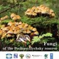 Книгу про гриби Печоро-Іличський заповідника видали англійською мовою