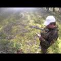 Конкурс збору грибів пройшов у воронезької області