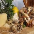 Новітня грибна дієта
