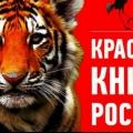 Про зникаючі рослини і тварин росіяни дізнаються з нової червоної книги