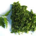 Салати з трав