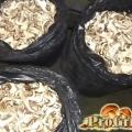 Сушені гливи: багаті вітамінами і мікроелементами гриби