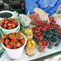 У Білорусії обіцяють небувалий урожай лисичок і чорниці