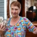 В новгородській області 73-річна вчителька початкової школи нина степанова розробила бізнес-проект з вирощування грибів