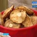 В Прибайкалля хороший врожай грибів і ягід