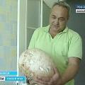 Житель Челябінська знайшов п'яти кілограмовий гриб