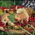 Жителі томської області можуть втратити мільярд рублів через неврожай ягід і грибів