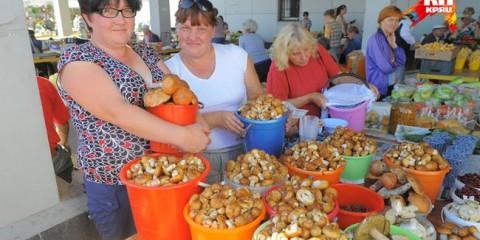 Через червневої засухи в Прикам'ї неврожай грибів
