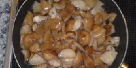 Опеньки смажені в сметані