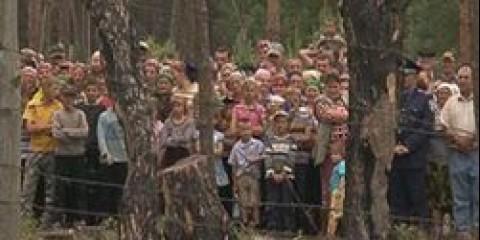 Португалія: університет Евори починає боротьбу з отруйними грибами