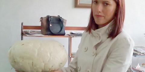 У лісах красноярського краю виріс двокілограмовий гриб