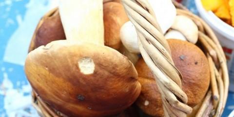 У нижегородської області з'явилися гриби