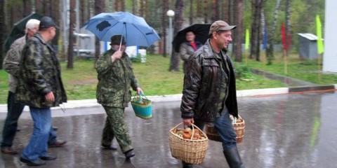У селі ласкаво рязанського району пройшов перший обласний фестиваль грибів