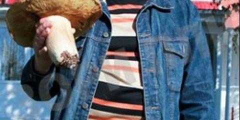Житель пермського краю знайшов білий гриб вагою більше кілограма